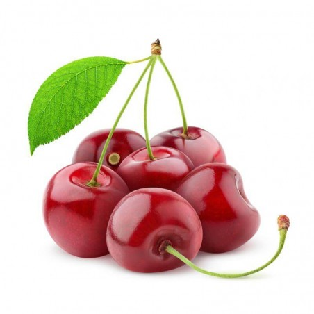 Cherry Flavor Concentrate